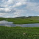 Wetlands and Riparian Areas Rehabilitation and Improvement